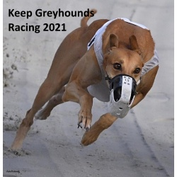 2021 Keep Greyhounds Racing Calendar - Quantity 1